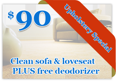 Affordable Carpet Cleaning Of Metro Detroit Rug